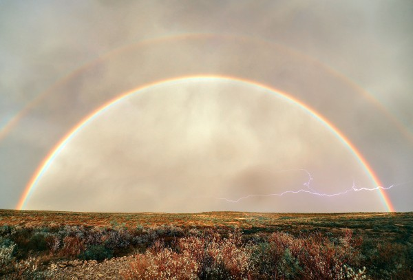 Rainbow by Mark Willis