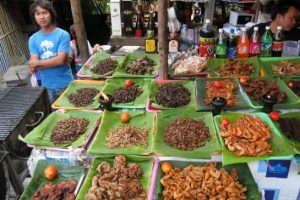 Insects in Thai market