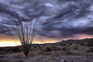 Rain storm in the desert