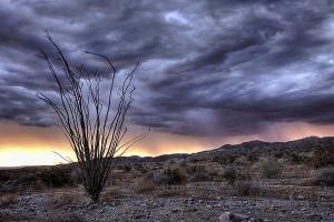 Rain storm in the desert